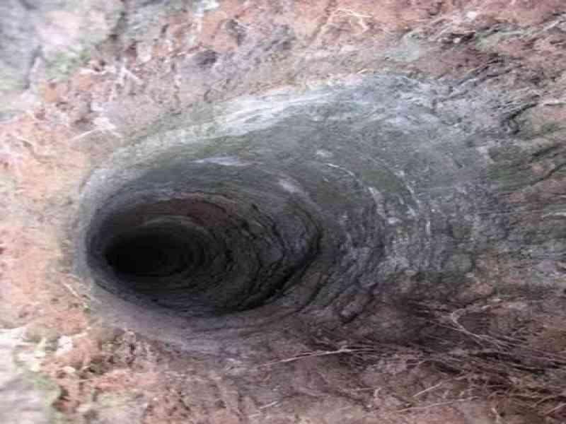 Misteriosos agujeros encontrados en los bosques de Rusia