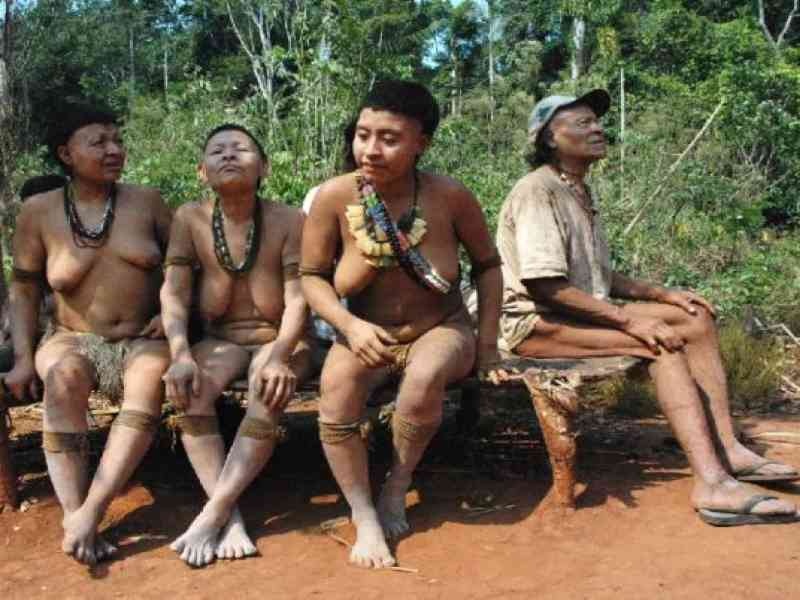 Encuentran Una Tribu Indígena Desconocida En Brasil Noticias Absurdas