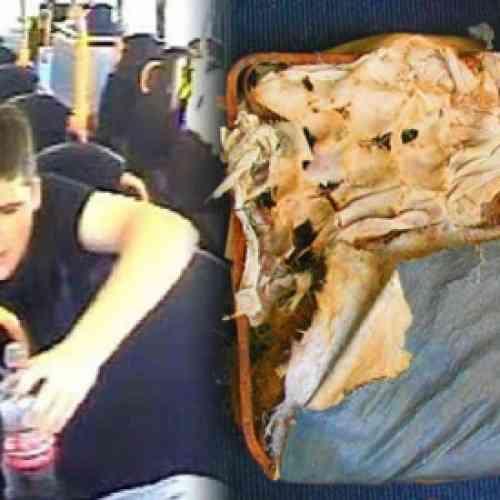 Buscan a hombre que se comió el asiento de un autobús
