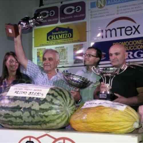 Una sandía de 85,6 kilos gana el concurso de Villanueva de la Serena (Badajoz)