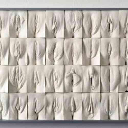 Obra de arte: La gran muralla de las vaginas.
