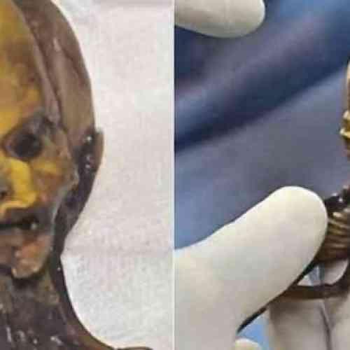 El alienígena de Atacama tiene ADN humano y es un mutante