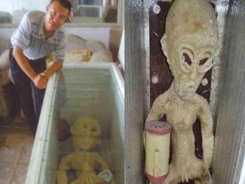 Un hombre asegura que tiene un alien en su nevera