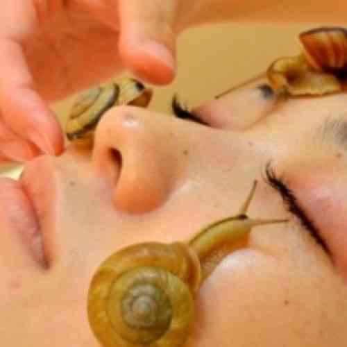 Caracoles vivos en la cara, última moda en Japón como tratamiento de belleza