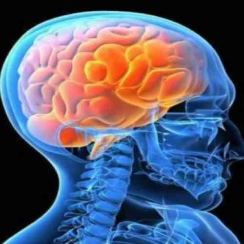 Estudio científico: El cerebro siente placer con el dolor ajeno