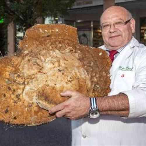 Un farmacéutico cacereño encuentra una seta de más de 12 kilos